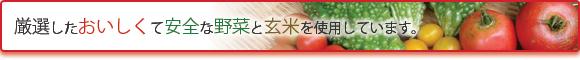 厳選したおいしくて安全な野菜と玄米を使用しています。